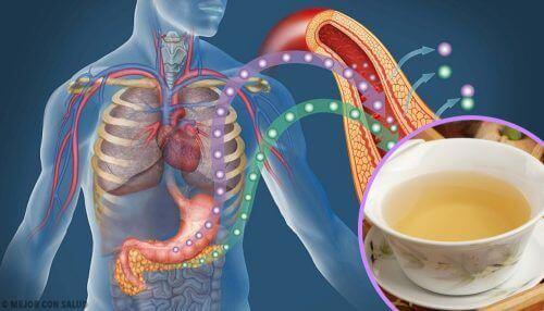4 naturliga teer som kan sänka blodsockret