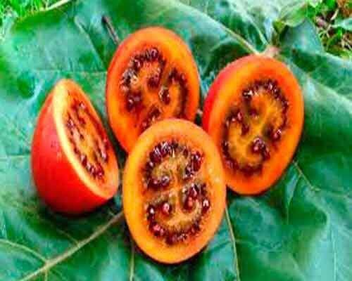 3 exotiska frukter och grönsaker du kanske inte har sett