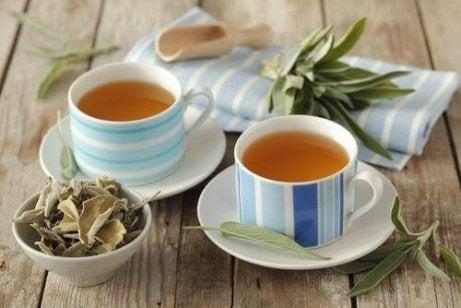 te på salvia