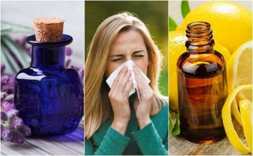 6 eteriska oljor som kontrollerar allergisymptom