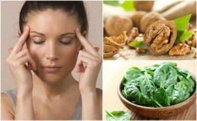 7 livsmedel för hjärnan som stärker din cerebrala aktivitet