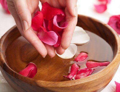 Rosenvatten har sammandragande egenskaper