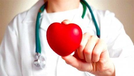 doktor med ett hjärta i handen