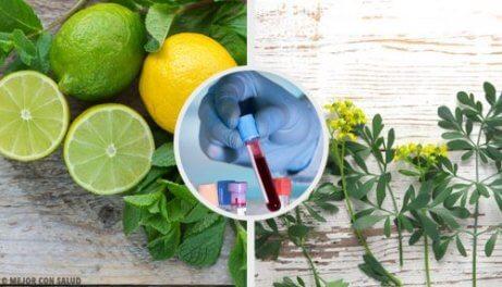 Carrulim – en naturlig kur med vinruta och citron