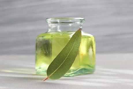 Eukalyptus i oljeform