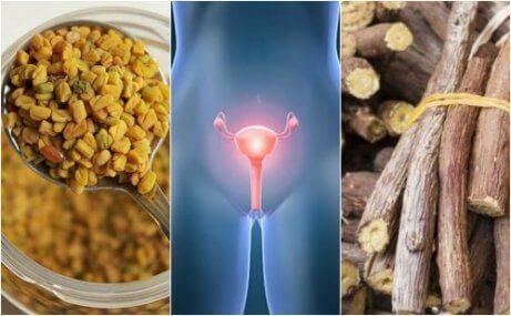 5 naturliga kurer för att hantera polycystiskt ovariesyndrom