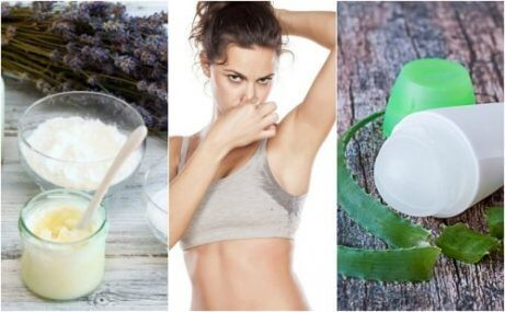 5 naturliga deodoranter som tar bort dålig lukt
