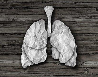 Rensa lungorna