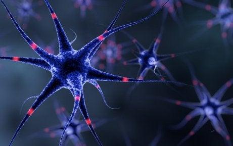 Skydda nervsystemet