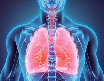 Lär dig att sluta röka och rensa lungorna