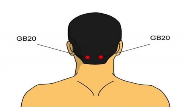 Baksidan av huvudet