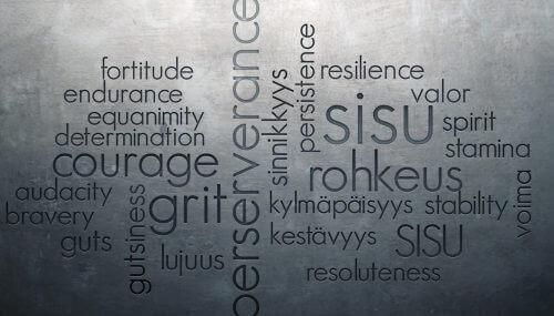Sisu och finska ord