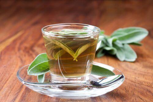 Salvia hjälper dig krympa stora porer