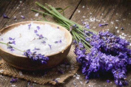 Lavendel är antibakteriell