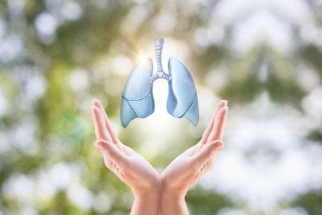 Var uppmärksam på olika symptom på lungcancer så att du upptäcker dem i tid.