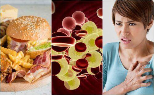 vad ska man undvika vid högt kolesterol