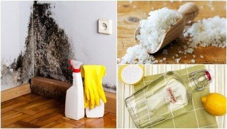 Ta bort fukt i hemmet med 5 effektiva metoder