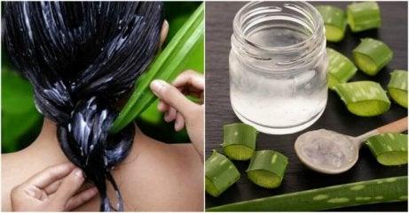Enzymerna i aloe vera reparerar hårcellerna och ger silkigt hår