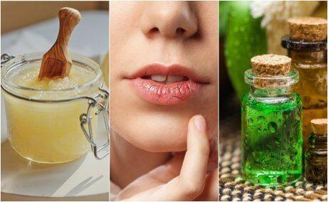 Hur man förebygger och behandlar spruckna läppar