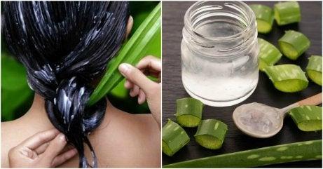 Hur man får friskare hår med aloe vera