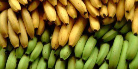 3 näringsmässiga skillnader mellan bananer och kokbananer