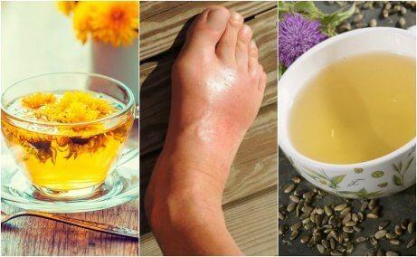 De 5 bästa teerna för att minska urinsyra