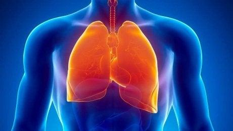 Tuberkulos kan innebära nattliga svettningar