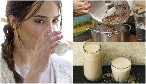 Kanariefrömjölk – vad är det och hur gör man?