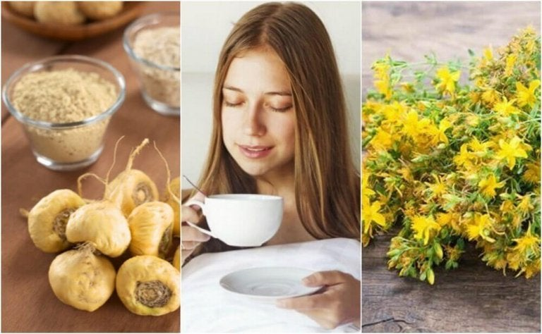 5 medicinalväxter som ökar sexlusten