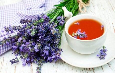 Lavendel får nervsystemet att slappna av