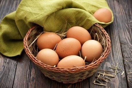 Ägg tillhandahåller B12