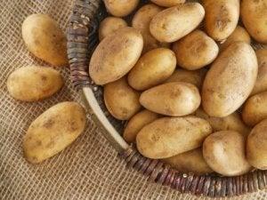 Färska potatisar