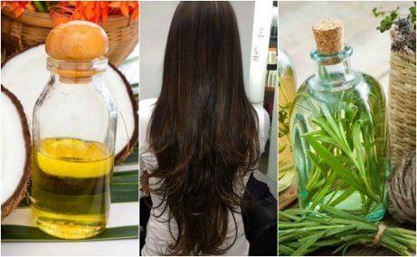 Stimulera hårtillväxt med en hemgjord behandling