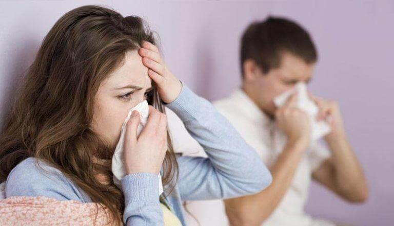 Ät koriander och håll förkylningarna borta