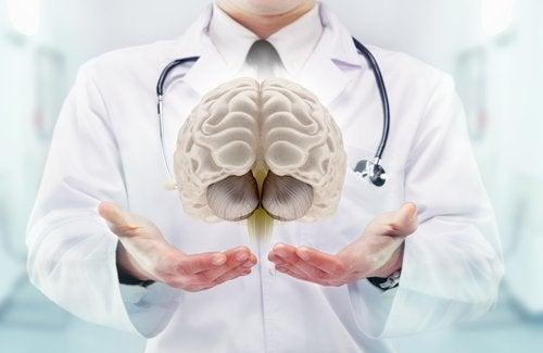 Läkare som håller hjärna