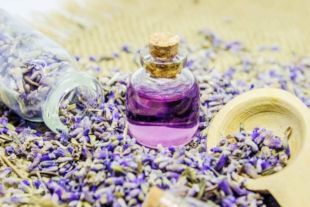 Hur man gör och använder lavendelolja
