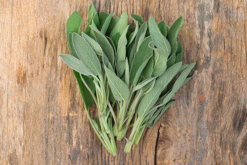 Salvia på träbord