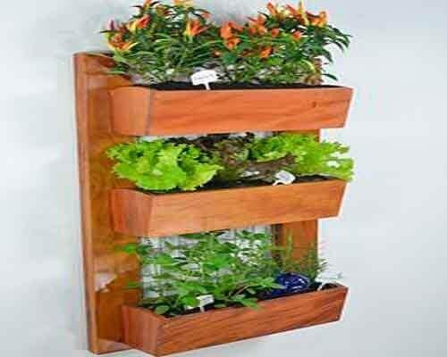 Hängande växter på vägg.