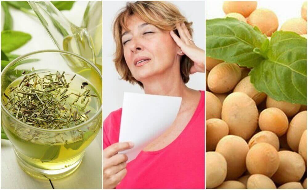 mat med naturligt östrogen