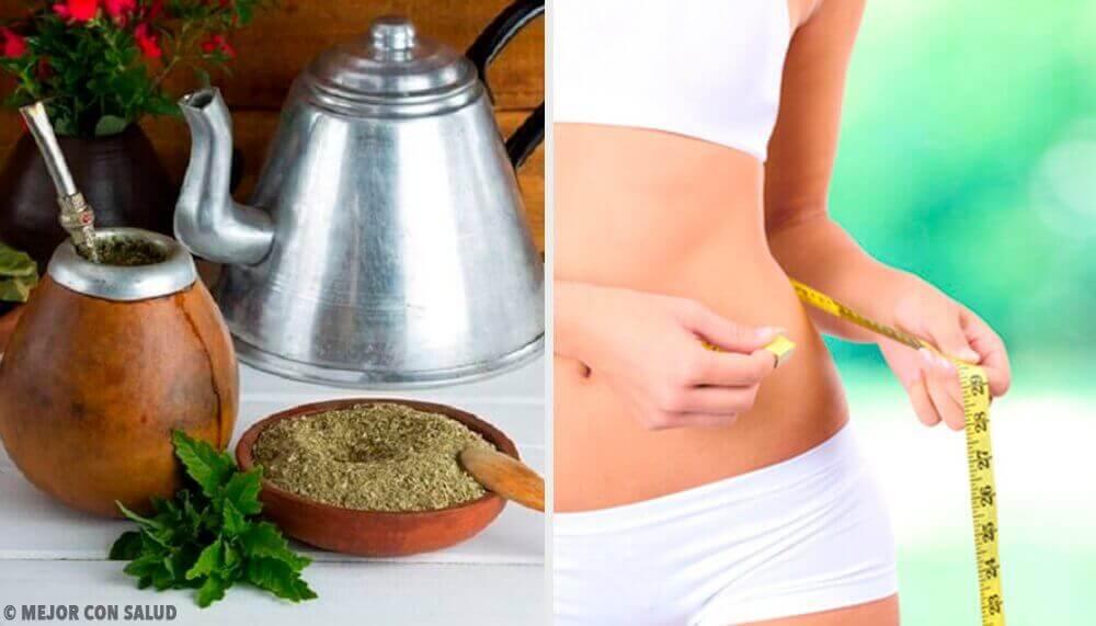 Fördelarna med mate: kan det hjälpa dig att gå ner i vikt?