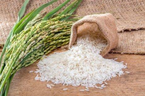 Du kan använda vitt eller brunt ris för att göra grönt ris