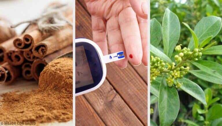 5 medicinalväxter för diabetes: de fungerar verkligen!