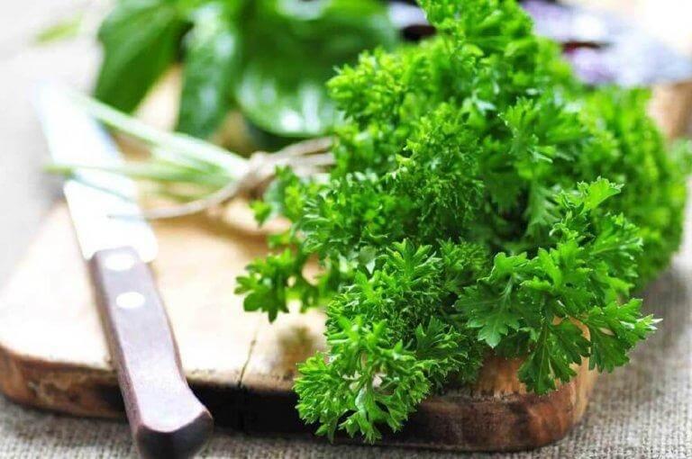 Persilja innehåller en stor mängd olika näringsämnen