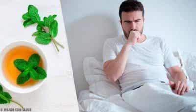 5 teer mot hosta: från timjan till ingefära