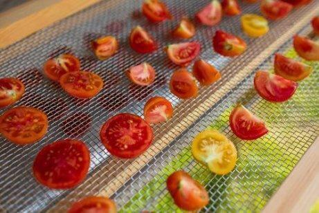 tomater i en soldriven torkugn