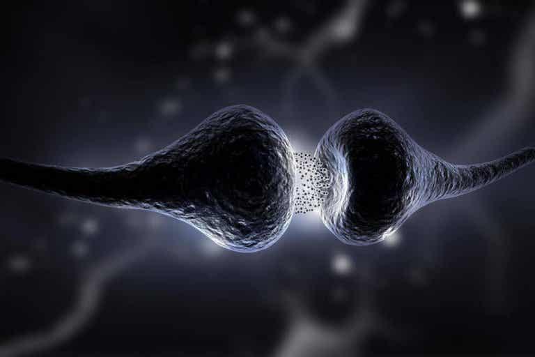 Serotonindieten: vad den är och vilka fördelar den har