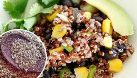 Härliga quinoarätter du kommer att älska - 3 recept