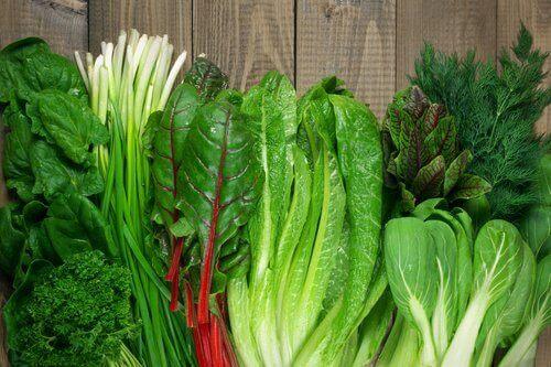 Gröna bladgrönsaker är bra för ämnesomsättningen