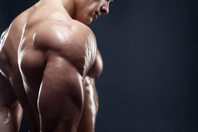 Fyra utsökta frukostar för att öka muskelmassan