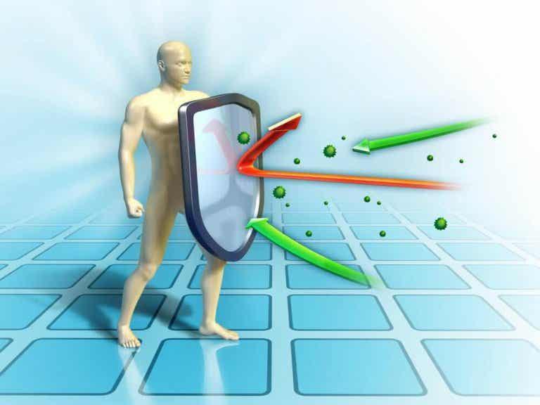 10 rekommendationer för att stärka dina försvar via kosten